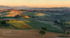 http://500px.com/photo/187745143 Italy. Tuscany. Evening light in the Val d'Orcia by architecturalphotographer - naumenkophotographer.com.ua www.facebook.com Original size 176х97 cm. 300 dpi. Panorama 4 lines 20 horizontal frame. Sony A7R  adapter Commlite EF-NEX for Canon EF  Canon EF 100-400mm f / 4.5-5.6L IS II USM. Date: 2/11/2015. Tags…