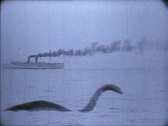 Is she real or not? There has been lots of controversy over the Loch Ness Monster's existence. While I may not be a believer of the supernatural, I would love to learn about Nessie's mysterious history.