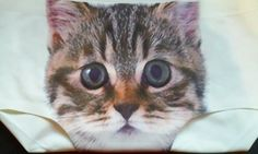 Scratch And Sniff Pussycat Kitten Kitty Panties Sexy Lingerie Underwear Cat Print Briefs by KorgisCreations on Etsy