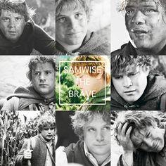 Samwise The Brave