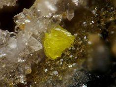 Francevillite Grube Clara, Wolfach, Schwarzwald, Deutschland Taille=1 mm Copyright Stephan Wolfsried