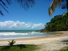 ITACARE.COM - Itacaré, Bahia, Brazil: tropical beaches, eco adventure, surf, capoeira...