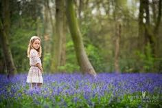 Image result for family photoshoot in the bluebells