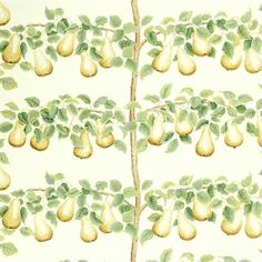 Perry Pears Fabric in Ochre & Leaf Green | A Celebration of the National Trust Sanderson Fabric, Painted Rug, English Country Gardens, National Trust, Curtains With Blinds, Garden S, Fabric Wallpaper, Pears, How To Draw Hands