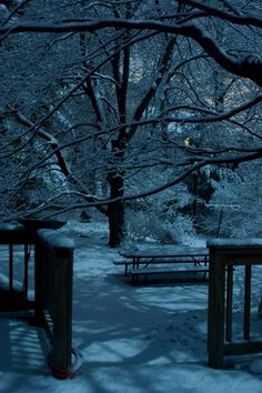 WRITING PROMPT: It's night and you step outside onto some freshly fallen snow...where are you going? What do you take with you? Who (or what) will you meet along the way? Describe the winter wonderland as you embark on your journey.