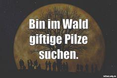 Bin im Wald giftige Pilze suchen. ... gefunden auf www.istdaslustig.... #lustig #sprüche #fun #spass