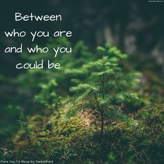 'Between who you are and who you could be' #DareYouToMove #Switchfoot