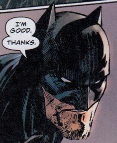 Dc Comics, Batman Comics, Batman Comic Art, I Am Batman, Stock Character, Comic Character, Batgirl, Catwoman, Batman Universe