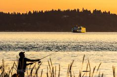 There was a great orange glow in the sunset that night and fishermen happened to be casting their lines in perfect alignment with the ferry to Vashon Island, WA