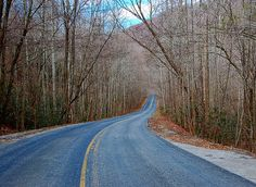 Mountain road to nowhere by Lucid Nightmare, via Flickr