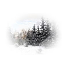 PicsDesktop21.png ❤ liked on Polyvore featuring winter, christmas e winter art