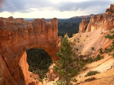 Arch Near Bryce Canyon in the Summer (Utah) [2048  1536] [OC]