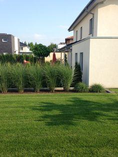 Nice Garten mit Gr sern