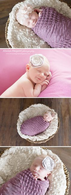 Newborn baby in basket photography ideas. I love the headband and colors.   #newbornphotography #babyinbasket #alwayselegantphotography  Newborn Photography-Gardnerville, NV - Always Elegant Photography