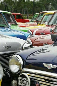 A rainbow of classic MINI coopers! #MINISparktogether