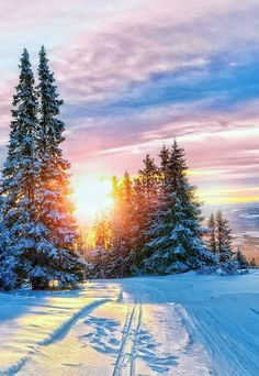 W i n t e r Winter Photography, Landscape Photography, Nature Photography, Winter Sunset, Winter Scenery, Winter Pictures, Nature Pictures, Winter Magic, Winter Snow