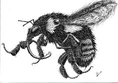 """""""BumbleBee"""" by Peter Kneeshaw on #INPRNT - #fine art #print #poster #art #ink #ink drawing #drawing #pen and ink #pen"""