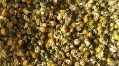 Vorgestellt: Das Heilmittel Kamille - Kamillenöl herstellen