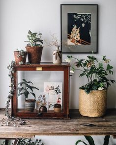 Winter is slowly giving way to spring here at home. #springstyling