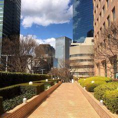 今日はお天気が良くなり春が来た的な明るさこのお散歩通路も何となくポカポカする正面のビルに映る雲も面白い#shinjuku #tokyo