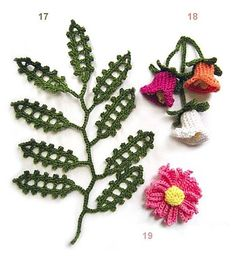 fleurs de 17 à 19