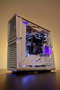 Purpura par Alain-S