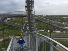Lopen over achtbaan Tiger and Turtle in Duisburg Turtle, Turtles, Tortoise Turtle, Tortoise, Sea Turtles