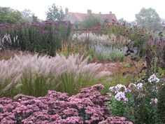 Pensthorpe Millennium Garden 09/10 - 05 by Pensthorpe Photos, via Flickr