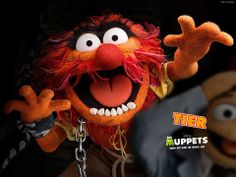 Animal, The Muppets Wallpaper Animal Muppet, The Muppets Characters, Les Muppets, Film Disney, The Muppet Show, The Dark Crystal, Jim Henson, Old Cartoons, Animal Wallpaper