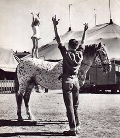 The circus just isnt what it used to be (30 Photos)