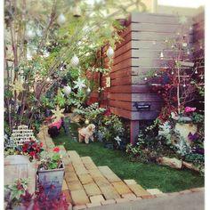 risaさんの、花壇,ガーデニング,クリスマスディスプレイ,ウッドフェンス,クリスマスガーデン,庭,手づくりの庭,ガーデン雑貨,わんこと暮らす家,クリスマス,壁/天井,のお部屋写真