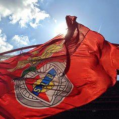Benfica Wallpaper, Big Love, Football, Portugal, Friends, World Football, Printing Press, Wall, Flags