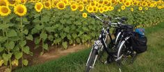 Europe self guided or small group walk & cycle holidays