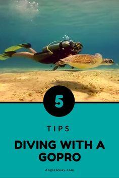 gopro underwater pho