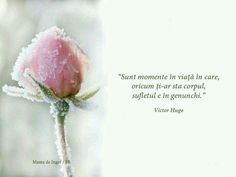 Bless The Lord, Victor Hugo, Projects To Try, Blessed, Let It Be, Thoughts, Quotes, Quotations, Quote