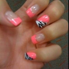Coral and zebra