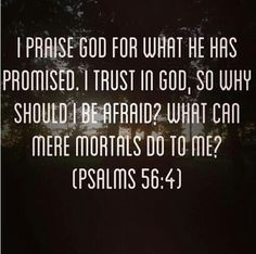 Psalms 56:4