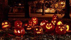 Von Lustigen Gessellen und garstigen Fratzen: Kürbis-Laternen gehören an Halloween zum absoluten Muss. (Foto: iStock/tvirbickis)