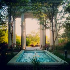 UNCW, one of my favorite spots to sit and pray.