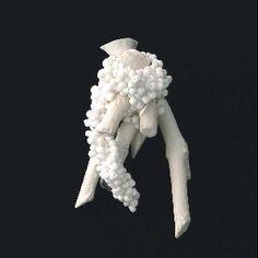 Weiss Brooch by Iris Eichenberg   # Ornamentum - 506½ Warren St.     Hudson, NY 12534     tel 518.671.6770     email info@OrnamentumGallery.com