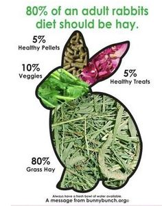 http://www.rabbitawarenessweek.co.uk/  No muesli-type mix here, only LOTS of hay - great for gut and dentition, veg and a very few pellets.  Ideal rabbit diet