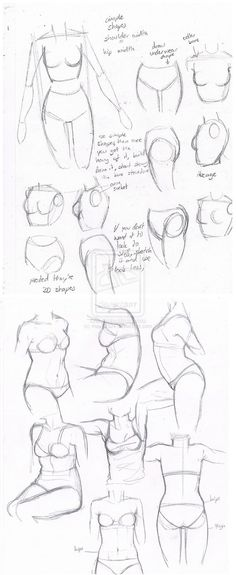 female body torsos by may12324
