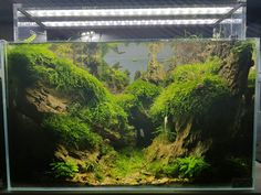 ADA 60p cave's of the dragon ""