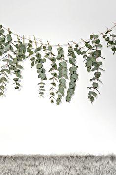 DIY Eucalyptus garland.