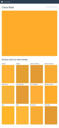 Citrus Blast, Benjamin Moore. Click the image to see similiar colors by other brands.