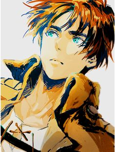 Eren, Attack on titan, AOT, SNK