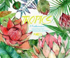 Tropics Floral  Watercolor Clipart Watercolor Floral by FLORISTKA