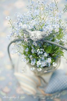The Charm of Home: Flowers for You                    Forgetmenots