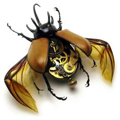 Insects as Steampunk Art Real insects are fitted with antique watch parts to create fascinating works of steam punk art. Design Steampunk, Chat Steampunk, Arte Steampunk, Style Steampunk, Steampunk Fashion, Steampunk Crafts, Steampunk Bedroom, Steampunk City, Steampunk Theme