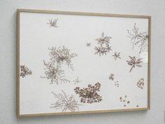 """herman de vries, een mooi voorbeeld van zijn werkwijze is """"on a roadside near restinga, 1978″, een ingelijste ordening van planten die De Vries aantrof langs..."""